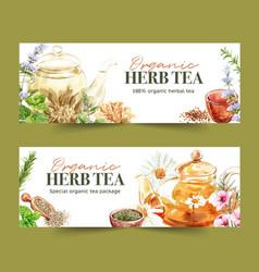 Herbal tea banner design with basil savory vector