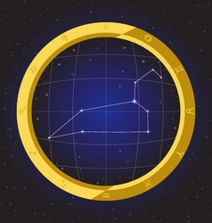 Leo star horoscope zodiac in fish eye vector