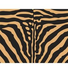 safari animal texture vector image