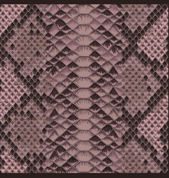 snake skin colorful animal pink seamless pattern vector image