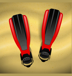 Swimming flippers on the sand vector