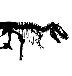 tyrannosaurus rex skeleton silhouette side vector image