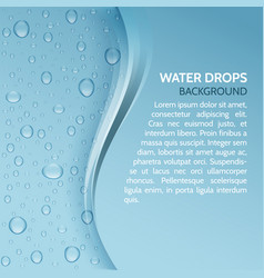 water drops realistic background with stripe vector image
