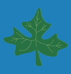 Fresh papaya leaf on blue background vector image