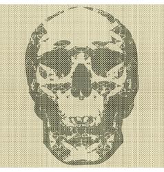 skull print vector image vector image