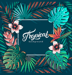 tropical hand written lettering text vector image