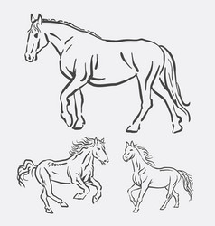 horse activity pet animal line art style vector image vector image