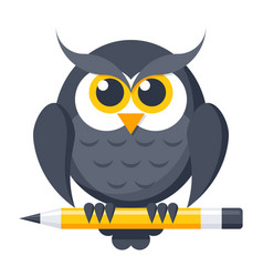 owl with pencil vector image vector image