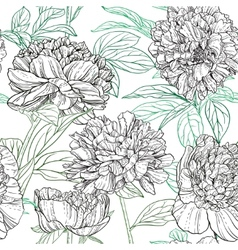 Seamless pattern of peonies graphics vector image vector image