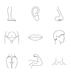 Body parts icons set outline style vector