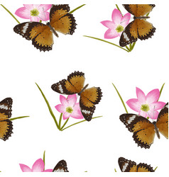 butterfly flowers seamless vector image