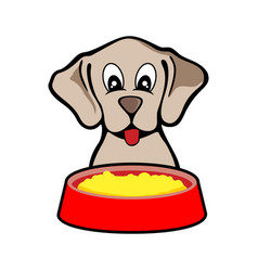 Feeding cute dog design vector