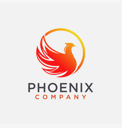 modern abstract phoenix logo icon template vector image