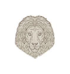 lion big cat head mane drawing vector image vector image