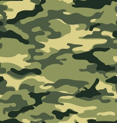 military background pattern vector image