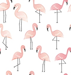 Flamingo pattern vector