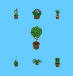 Isometric houseplant set of plant peyote blossom vector