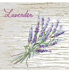 Lavender rustic background with nice design vector image