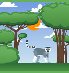 lemur in summer nature landscape vector image