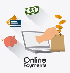 Online payments design vector image