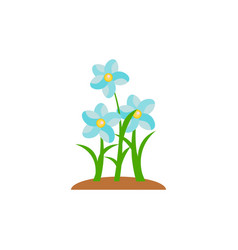 summer and spring blossom forest and garden blue vector image