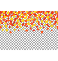 thanksgiving background wit orange autumn leaves vector image