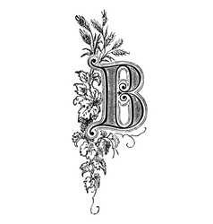 vintage drawing decorative capital letter b vector image