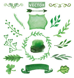 watercolor green decor branches floral set vector image