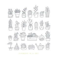 icon plants in pots vector image