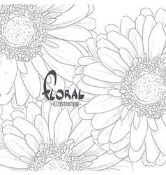 Gerbera drawn in pencil vector image