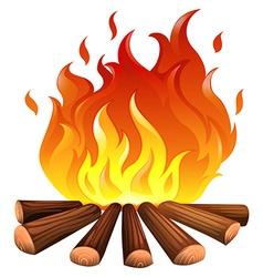 A fire vector