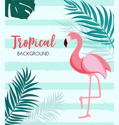 Abstract tropical background with flamingo and vector