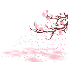 branches of a fading pink cherry sakura the vector image