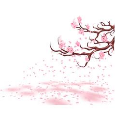 Branches of a fading pink cherry sakura the vector