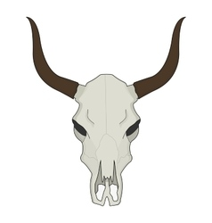 Cow skull Color vector image