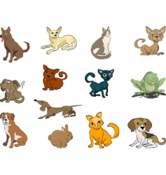 Cute pets vector