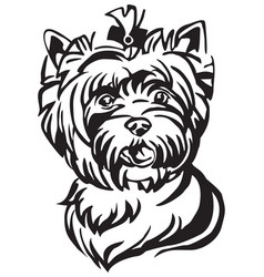 decorative portrait of dog yorkshire terrier vector image