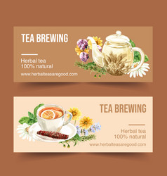 Herbal tea banner design with chamomile vector