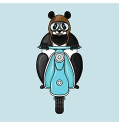 Panda in helmet goes on scooter Hand drawn in vector