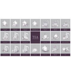 Set of labels or tags with different types of tea vector