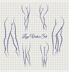 Sexual woman legs sketch collection vector