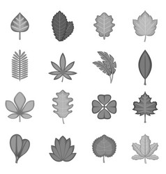 different leafs icons set monochrome vector image
