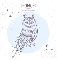 Owl fairy vector