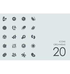 Set of organisms icons vector