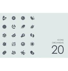 Set organisms icons vector