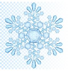 transparent snowflake vector image