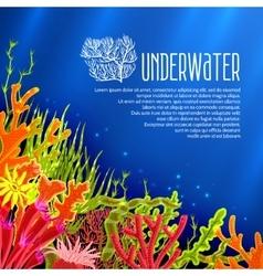 Underwater corals poster vector