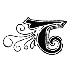 vintage drawing decorative capital letter t vector image