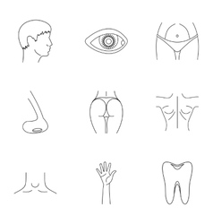 Body icons set outline style vector image vector image