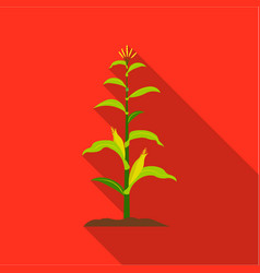 corn icon flat single plant icon from the big vector image vector image